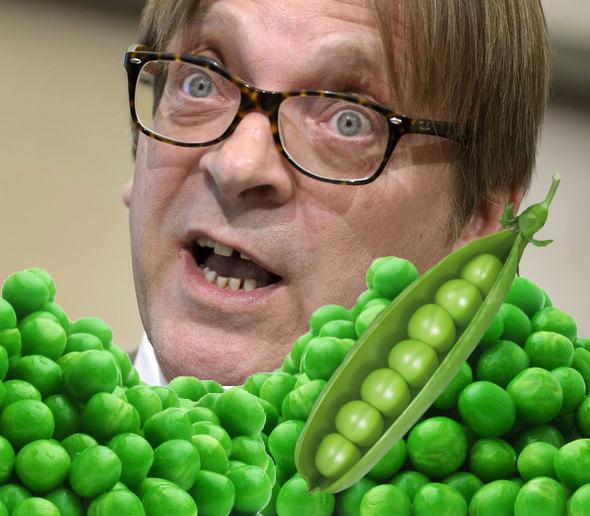 Guy-Verhofstadt-peas.jpg